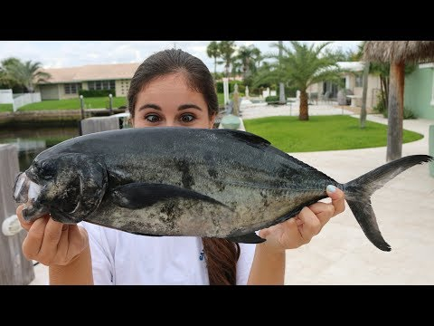 Would YOU Eat It??? TRASH Fish Taste Test! Blue Runner - Catch, Clean Cook!!!