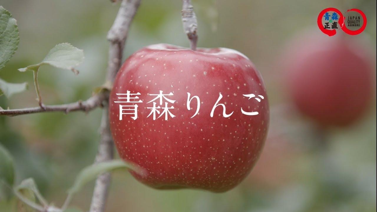 四季が育む青森りんご