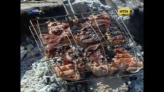 Где приготовить шашлык? - Зоны для пикников в Киеве