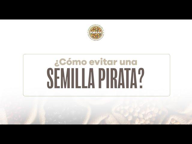 ¿Cómo evitar una semilla pirata?
