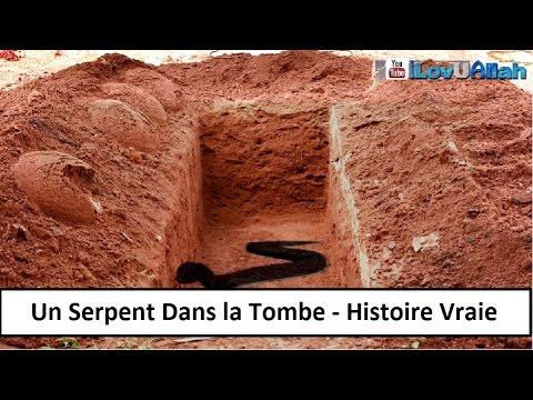 UN SERPENT DANS LA TOMBE - HISTOIRE VRAIE