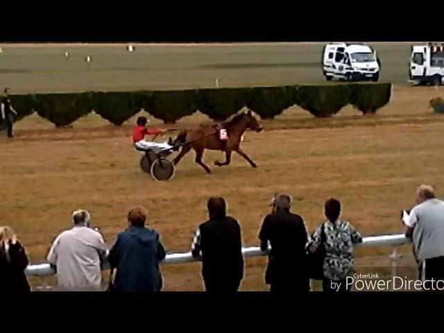 [Course de poney  n°1]: à lattelé #1