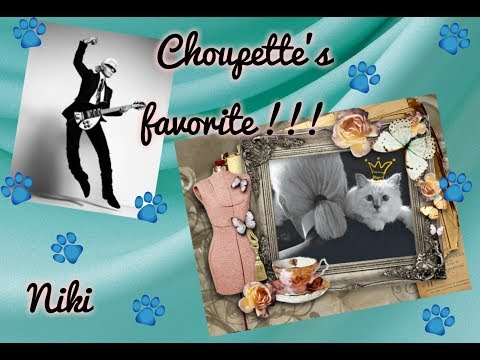 Choupette's Favorite !!! (Любимица  Шупетт !!!)  исп.  Anna Rossinelli