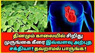 தினமும் சிறிது முருங்கை கீரை இவ்வளவு அற்புத சக்தியா ! Drumstick leaves   Health tips   Ayurveda