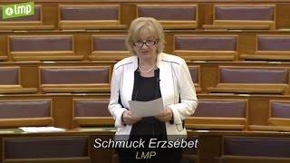 Schmuck Erzsébet: Emeljék 97 ezer forintra az ápolási díjat! (LMP - Politika)
