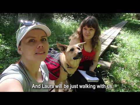 HIKING WITH A REPORTER // Trip to Marimetsa Nature Reserve, Estonia