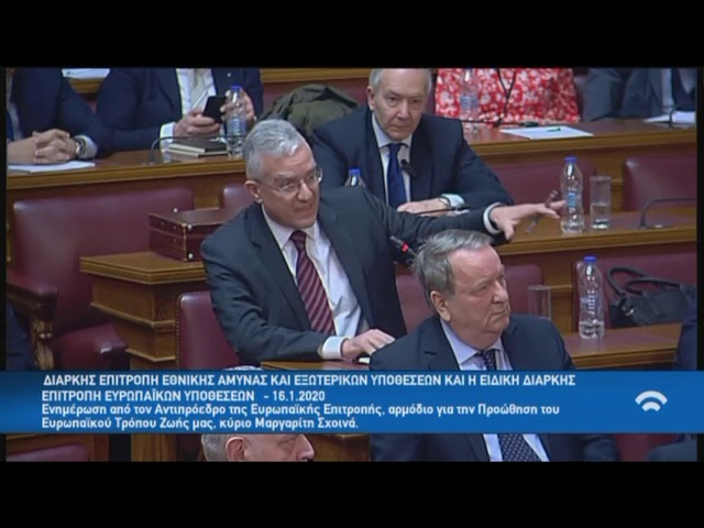 Βολουδάκης στην Επ. Ευρωπαϊκών Υποθέσεων, Βουλή - Ενημέρωση από το νέο Αντιπρόεδρο Μαργαρίτη Σχοινά
