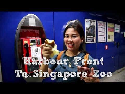 food-&-travel-||-perjalanan-menuju-singapore-zoo-dari-harbour-front-(hd)