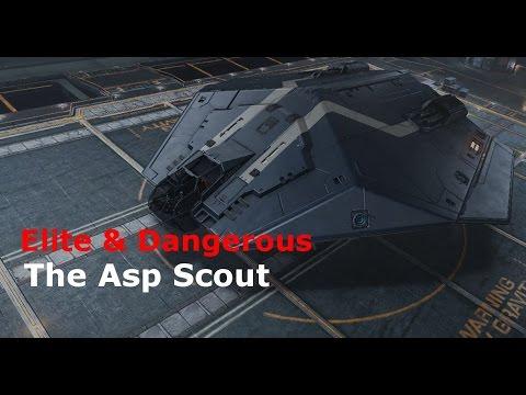 Asp Scout - Elite & Dangerous Roguey