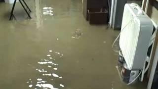 Broadview Heights sanitary sewer flood 2