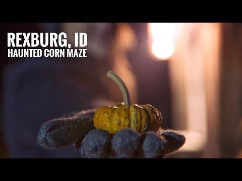 Haunted Corn Maze in Rexburg Idaho was too scary 👻