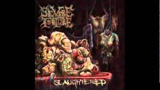 Watch Severe Torture Feeding On Cadavers video