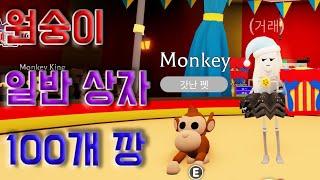 [로블록스 입양하세요] 원숭이 업데이트 !! 일반 상장…