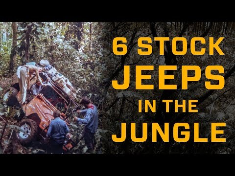 6 Stock Jeeps in the Jungle