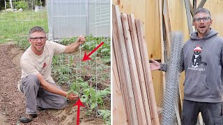 Taking Our Homestead to the Next LEVEL! Trellising Tomatoes to Double our Harvest & a New COOP BUILD