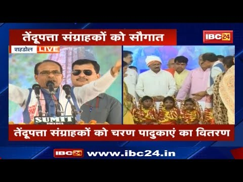 CM Shivraj Singh Speech in Shahdol MP | तेंदूपत्ता संग्राहक और असंगठित मजदूर सम्मलेन का आयोजन