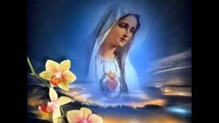 Mẹ Đầy Ơn Phúc