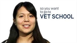 What You Need to Know About Paying for Veterinary School