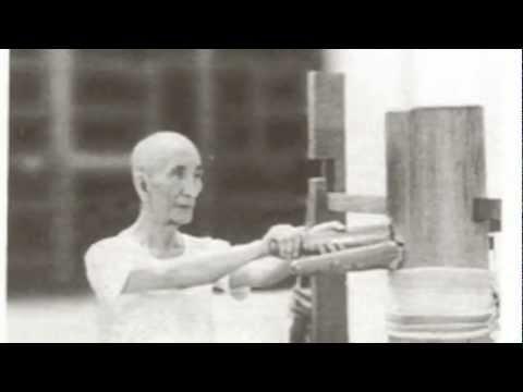 Ip Man/Bruce Lee- Maestro