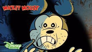 Mi Pequeño Jardín | Mickey Mouse