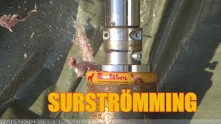Crushing Surströmming with Hydraulic Press