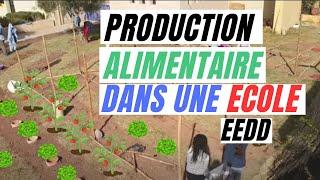 Espoir Confiné, Re-évolution. Créer des jardins productifs dans les écoles en Permaculture.