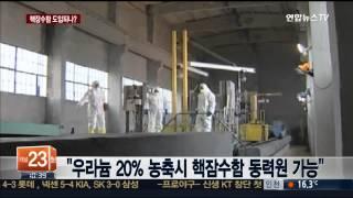 """""""한국 군, 핵잠수함 건조 모색"""" vs """"쉽지 않을 것"""" / 연합뉴스TV (Yonhapnews TV) / 연합뉴스TV (Yonhapnews TV)"""