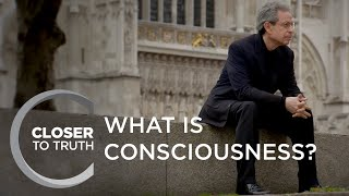 What is Consciousness? | Episode 1302 | Closer To Truth