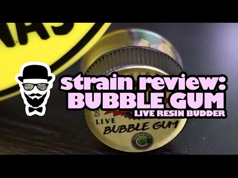 Strain Review: Bubble Gum Live Resin Budder (Moxie) - YoungFashioned.com
