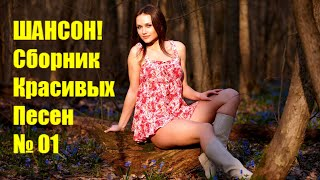 ШАНСОН  ---  Сборник (2019) / Видео
