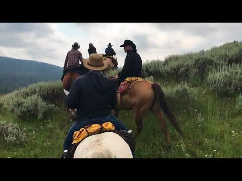 Double Rafter Cattle Drive - Wyoming 2017