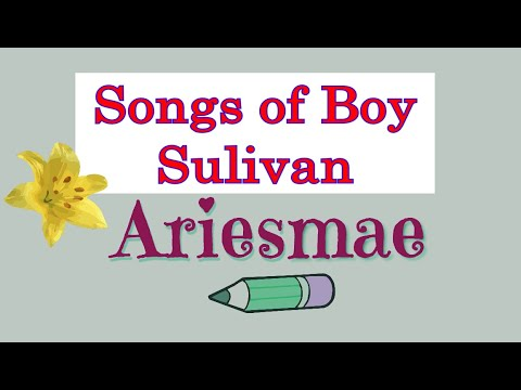 Non Stop Songs of Boy Sullivan