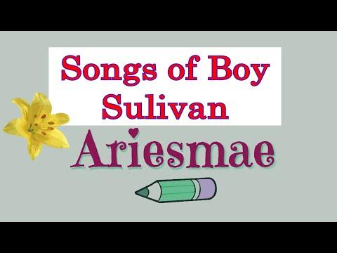 Non Stop Songs of Boy Sullivan