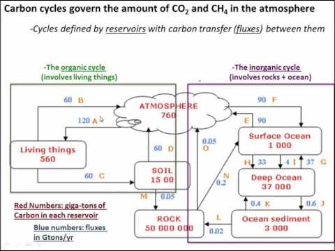 The carbon cycle and global climate (class 24- v1)