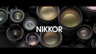 Ever Wonder How Nikkor Lenses Glass is Made? Pretty Impressive!!