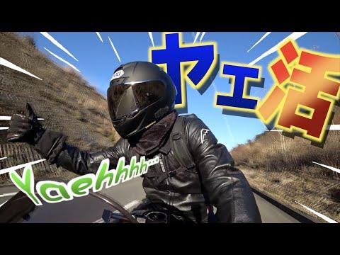 【ヤエ活】ヤエーのある生活(ないよ)は素晴らしい…!!(ないって)