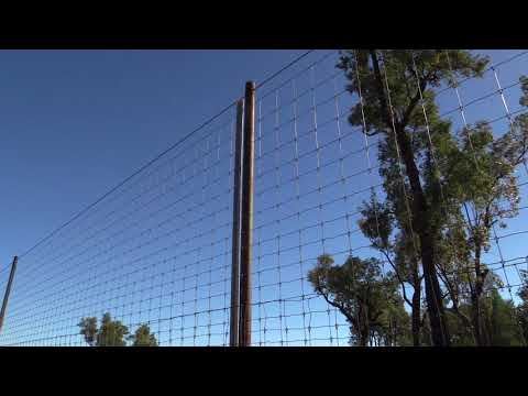 Exclusion fencing tips from a producer – Will Roberts