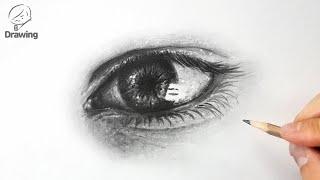 [인체 드로잉 그리기 기초] 눈 연필 소묘 그림 / 얼…