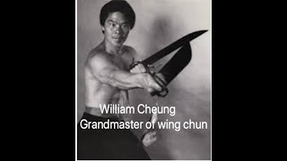 Ip man stories: William Cheung
