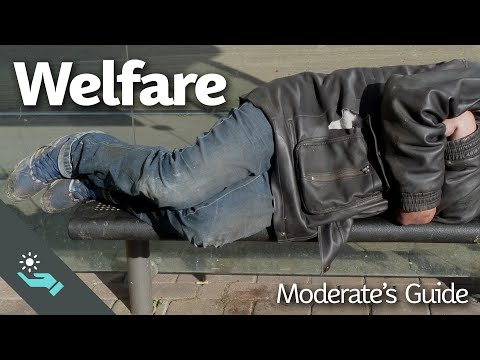 The Complete Moderate's Guide to Welfare