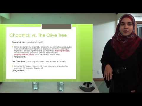 Environmental Health from a Public Health Perspective - Dr. Tasnim Khalife
