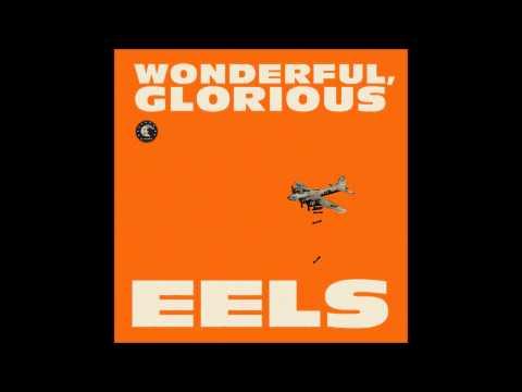 Eels  Wonderful, Glorious