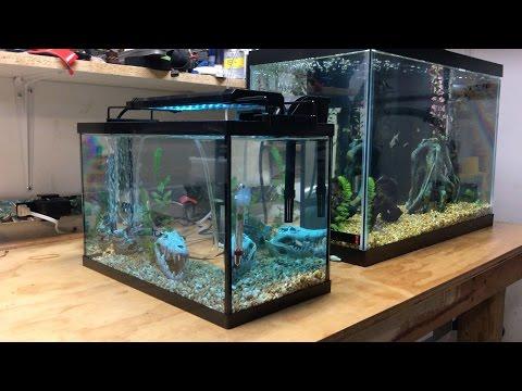 Ekostore 6 Watt Multi-color 36 LED Aquarium Light For 5 Gallon Tank