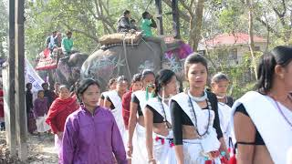 Download Video 14th Chitwan Elephant Festival, Nepal 2017 | Opening Ceremony MP3 3GP MP4