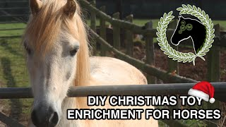 DIY christmas enrichment/toy for horses