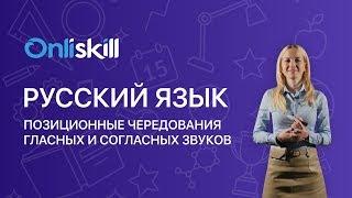 Русский язык 5 класс: Позиционные чередования гласных и согласных звуков