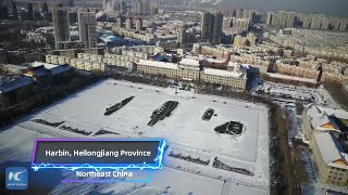 Amazing snow creations on NE China campus
