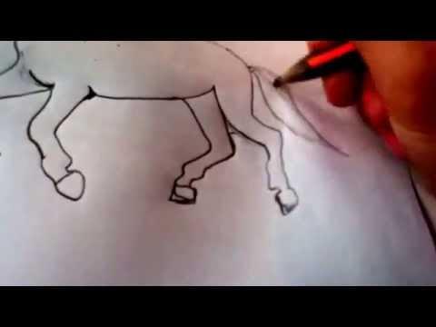 Galoppierendes Pferd-zeichnen teil 2