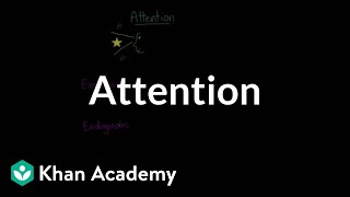Divided attention, selective attention, inattentional blindness, & change blindness   Khan Academy
