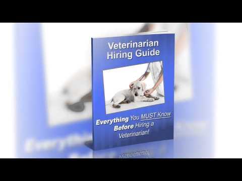 Viera Florida Area -- Veterinarian Guide